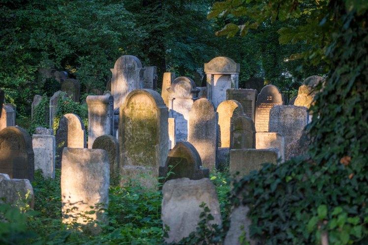 FKZ 2019 Przemiany Żydowskiego Cmentarza_5732