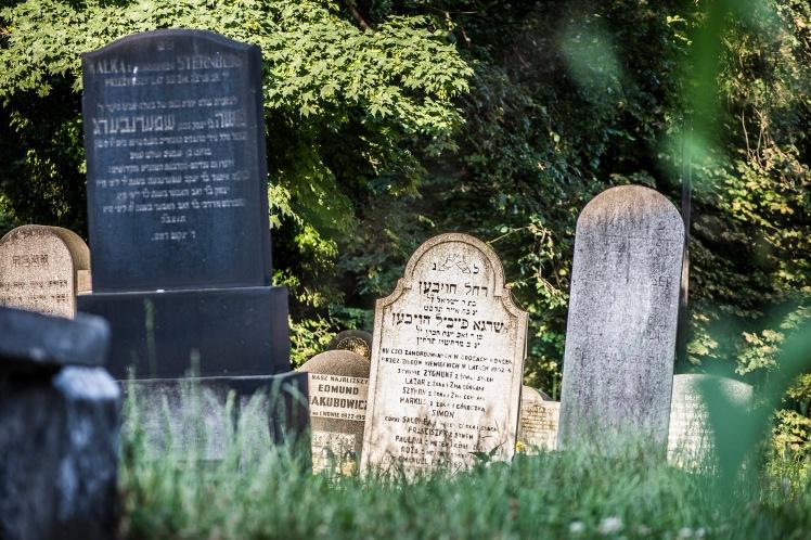 FKZ 2019_Przemiany Żydowskiego Cmentarza_5645