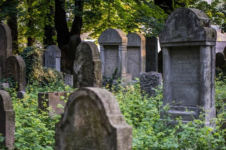 FKZ 2019_Przemiany Żydowskiego Cmentarza_5693