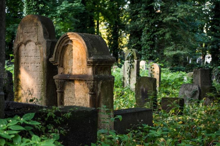 FKZ 2019_Przemiany Żydowskiego Cmentarza_5708